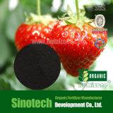 Fertilizante orgânico de Humizone de Leonard: Pó de Humate 70% do potássio (H070-P)