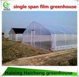Heißer Verkaufs-haltbares Gebrauch-Gewächshaus-Gerät für die Landwirtschaft