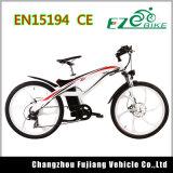 Heißes verkaufen36v 250With500W E Fahrrad mit Pedalen