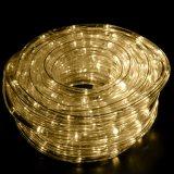 훈장을%s 방수 옥외 밧줄 빛 LED 지구 빛