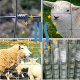 電流を通された農場の囲をインストールしなさい
