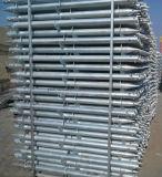Solarmontage-heißer eingetauchter galvanisierter Bodenschrauben-Anker