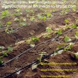 Пластичный продукт - пояс полива потека PE для садовничать и земледелия