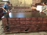 La película negra de China hizo frente a la madera contrachapada con pegamento de la base WBP del álamo