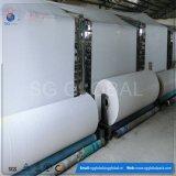 Tissu tissé blanc de empaquetage agricole de polypropylène