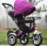 Form Hot Sell Baby Push Trike Children Tricycle mit Brake (OKM-540)