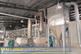 Macchina dell'essiccatore istantaneo del sale del carbonato