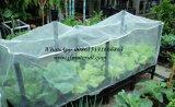 Vegetable를 위한 PE Net Plastic Mesh
