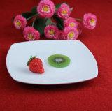 Piatti di ceramica degli articoli per la tavola dei piatti del quadrato bianco puro di modo