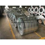 La perfezione recentemente ha galvanizzato le bobine d'acciaio