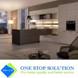Blanc de cartel et Module de cuisine de meubles de maison de fini de placage (ZY 1184)
