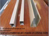 Galvanisiertes /Seamless-rechteckiges Gefäß-Quadrat-Edelstahl-Rohr des quadratischen Rohres