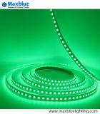 Striscia di alta luminosità DC24V 5050SMD 96LEDs/M RGB LED
