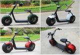 Motorino elettrico della gomma grassa di Citycoco/Seev/Wolf/motociclo elettrico di Harley