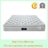 2017 populärer Pocket Sprung Mattress-R25