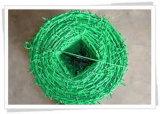 Galv. o filo rivestito di torsione del PVC doppio per la rete fissa