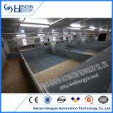 21 van de Fabrikant van de Varkensfokkerij van de Apparatuur van het Kinderdagverblijf van het Bed jaar van de Kooi van het Biggetje voor Verkoop
