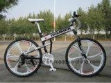 2016 bicicleta do projeto MTB da notícia com frame de aço da velocidade
