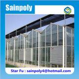 Grandes serres chaudes en verre agricoles de bonne qualité