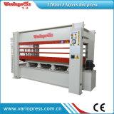 Máquina caliente hidráulica de la prensa de la carpintería