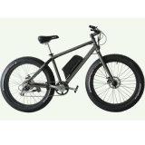 جديدة [فسون] شاطئ طرّاد, إطار العجلة كبيرة درّاجة كهربائيّة ([جب-تد00ز])