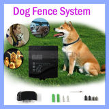 BerufsGrade Electric Dog Fence Complete Installation Kit für Electronic Fencing System mit Ein Collar