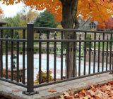 Cercas do jardim do ferro feito com porta