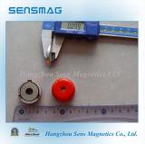Conjunto magnético do potenciômetro dos ímãs permanentes para apertar