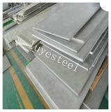 Het Warmgewalste Blad van het roestvrij staal/Plaat 310S