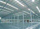 Entrepôt d'usine d'atelier de structure métallique/structure en acier de Frame/Steel (SP)