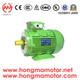 Elektrisches Motors Ie1/Ie2/Ie3/Ie4 Cer UL Saso 1hma801-2p-0.75kw