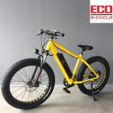 Batterie au lithium et bicyclette électrique de gros pneu