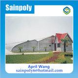 Qualitäts-Solargewächshaus für Blume