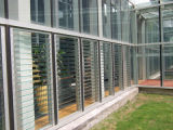 Freier Raum und Tinted Louver Glass für Windows Glass/Bathroom Glass