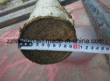 Fabricant Chipper en bois de tambour en bois de rebut approuvé par CE