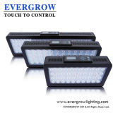 Evergrow It2080 LED Aquarium-Licht für Fisch-Behälter
