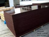 Gute QualitätsShuttering Furnierholz für Gebäude