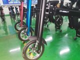 elektrischer Roller 250With500W mit Silk Drucken-Firmenzeichen