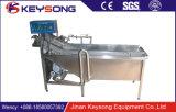 Máquina de lavar vegetal automática da bolha de ar da fruta