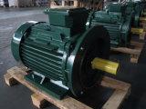 Motor eléctrico monofásico del comienzo y de la corrida del condensador (marco del arrabio)
