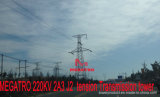 Megatro 220kv 2A3 J2 Spannkraft-Übertragungs-Aufsatz