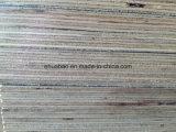 madera contrachapada del abedul de 21m m usada para el encofrado concreto