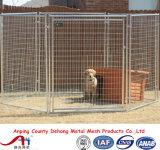 Paleleiro de cão revestido de pó, corrida de cães, gaiola de cão, cerca de cão para venda