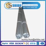 Molibdeno Rod, barra di Moly, elettrodo di alta qualità del molibdeno