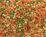 Vegetais misturados congelados IQF chineses para exportar