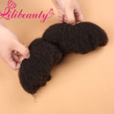 Weave brasileiro Curly Kinky do cabelo humano de Remy do Virgin do Afro