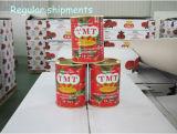 Soem-sortiert Marke eingemachtes Tomatenkonzentrat von allen 70 G bis 4.5kg