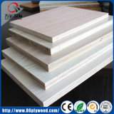 Placa branca da madeira compensada da melamina do MDF da classe dos gabinetes de cozinha da porta