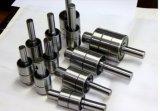 Rolamento da bomba de água do motor Wb163066 Rolamento automático da bomba de água Wb1630082