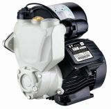 Solo Stage Electric Automatic Hot y Uno mismo-Priming Water Pump (JLM60-200A) de Cold Water